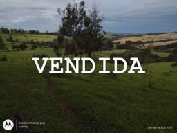 Vende-se Fazenda de 140 Alqueires Região de Siqueiras Campos PR