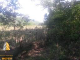 Fazenda Unai, 48 hectares, a margem de rio