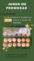 Promoção nos ovos caipira