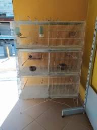 Viveiro expositor para pássaros.