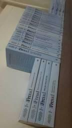 Obras Completas de Sigmund Freud 24 volumes edição standart Capa Comum