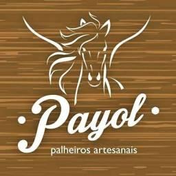 Seja um Representante Payol