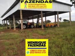 Título do anúncio: Fazenda na região de Novo Acordo Tocantins