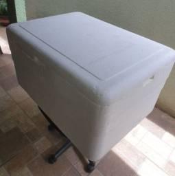 Caixa de isopor Grande com dreno