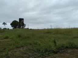 1.500 hectares pra pecuaria ou lavoura no Pará zap (91)988697836