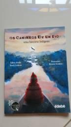 Os caminhos de um Rio, uma história indígena