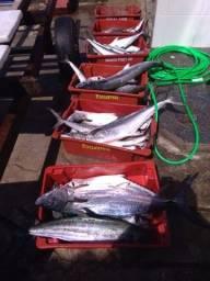 Título do anúncio: Pescaria alto mar Cananéia