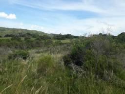 55 hectares de campo