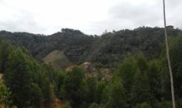 Terrenos em Nova Almeida Domingos Martins a partir de 25 mil
