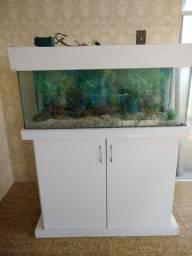 Aquario com base em madeira