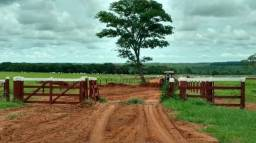 Fazenda parcelada ou crédito para fazenda