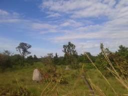 740 há (153 alq) ótima para pecuária, região do baixo Araguaia a melhor de chuvas do TO