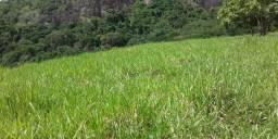 Vendo Fazenda no município de Itabela