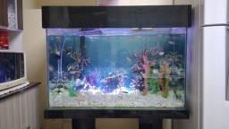 Vende-se aquário completo