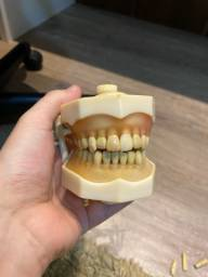 Manequim Dentistica Prodens Pronew f3 odontologia