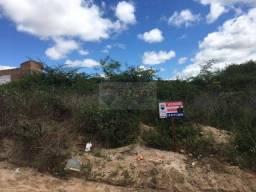 Título do anúncio: Terreno Residencial à venda, Novo Horizonte, São João - .