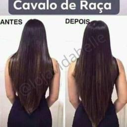 Kit Cavalo de Raça