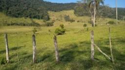 Fazenda no Vale do Ribeira 400 alq, pecuária Búfalos