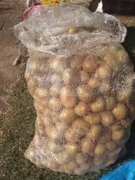Batata e cebola vendendo kg e saco com 50 kgs