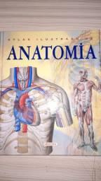 Livro Altlas ilustrado anatomia