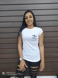 Camisetas Dry Fit - Diversas cores e tamanhos - Atacado e varejo