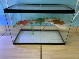 Título do anúncio: Terrario aquário novo grande