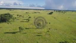 Fazenda 330 ha região chumbo poconé