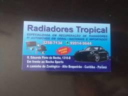 Vaga para  profissional na area de radiador