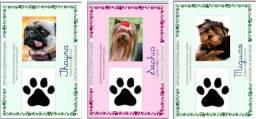 Rg Pet - Documento para seu bichinho<br><br>