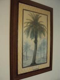 Quadro gravura Palmeira moldura madeira detalhada