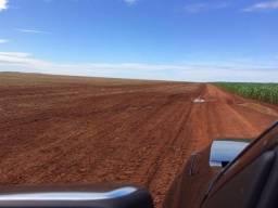 1900 Hectares, 1800 hectares lavoura, lavoura soja e algodão, Diamantino ?MT