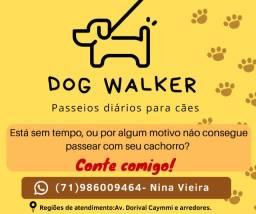 Dog Walker Salvador