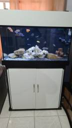 Aquario Jumbo 450 litros