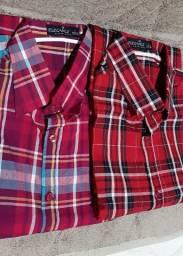 Camisas Elegance manga longa