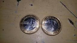 Duas moedas beija flor
