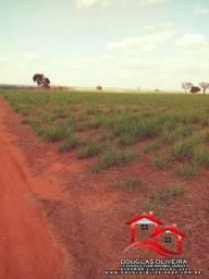 Fazenda 24 Alqueirão Em Frutal/MG