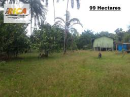Fazenda com 99 hectares à venda na Zona Rural de Humaita/AM-Cód FA0130