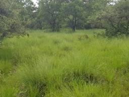 Fazenda 940 hectares em Mimoso