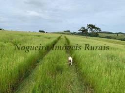Título do anúncio: Fazenda com 59 alqueires para pecuária (Nogueira Imóveis Rurais)
