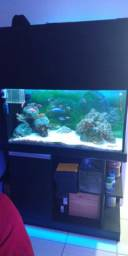 Torro aquário 300 litros com móvel SUMP lateral