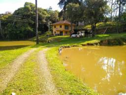Chácara Córrego Fundo - S. J. Pinhais