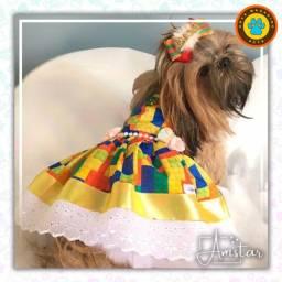 Vestidos Pet Premium