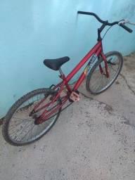 Bike reduzida