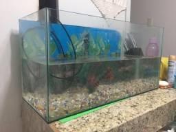 Vendo ou Troco Aquario, med: 60x25x30cm