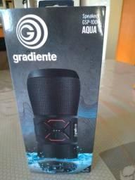 Caixa de Som GSP-100 Gradiente