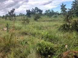950 hectares,400 hectares pasto sujo,terra para lavoura e pecuária,região Rosário Oeste-MT