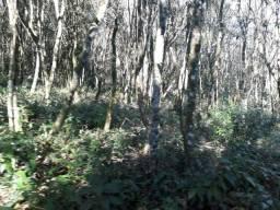 Negocio de ocasião Chacrinha plana com riacho em Vila Seca 65 mil