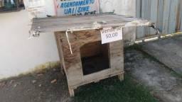 Casa de cachorro ?