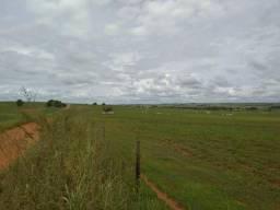Fazenda 70 alqueires mun. de Tarabai (dupla aptidão) soja, cana, pastagem e outras cultura