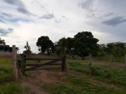 Lindo sítio no Quinari 14 hectares